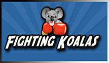 koala_logo